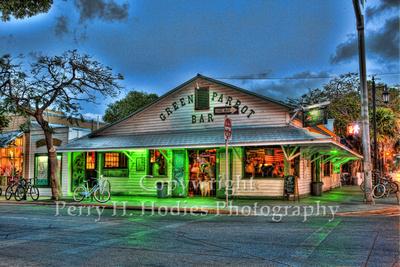 Green Parrot Photography Green Parrot Bar